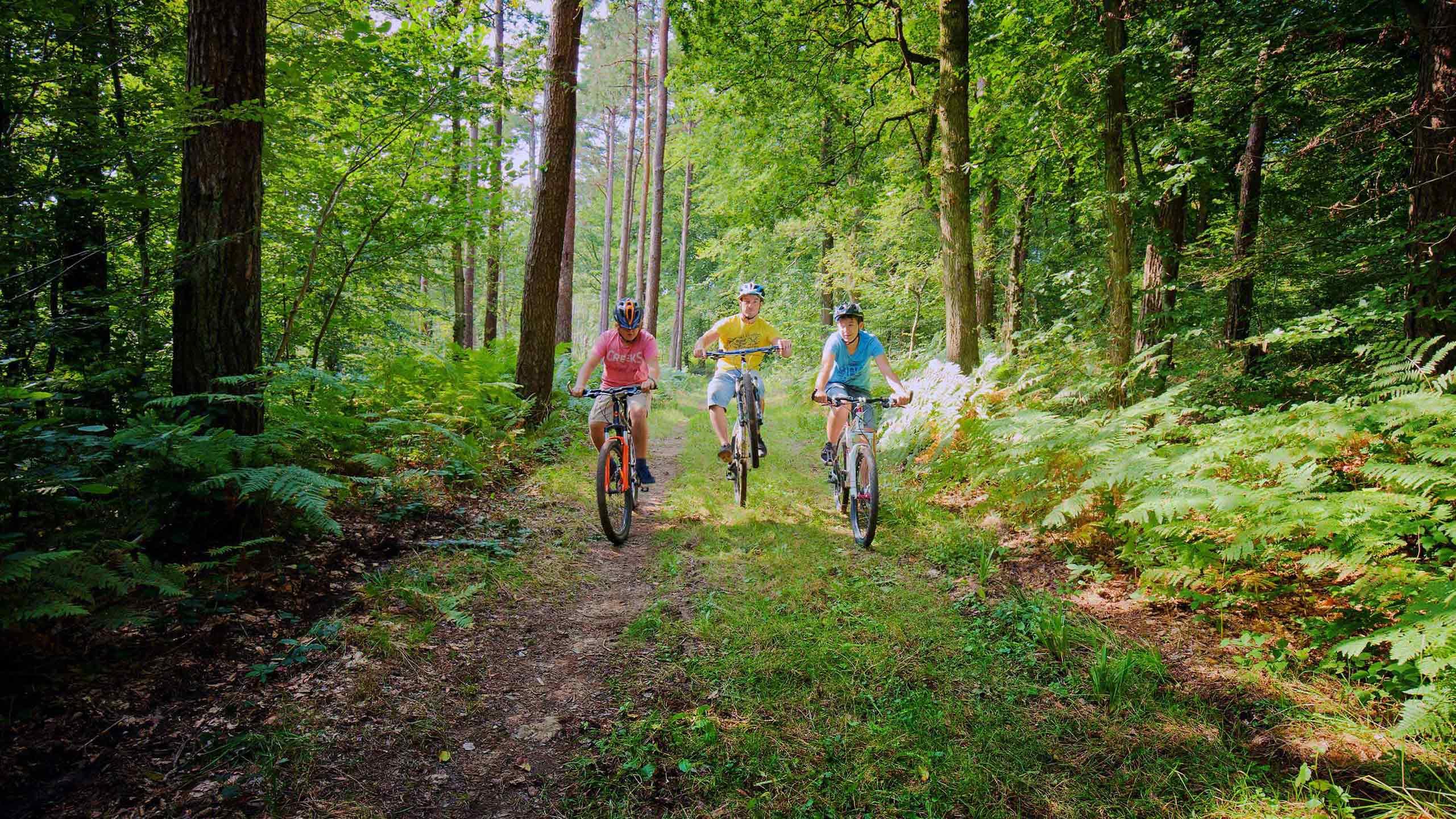 Randonnée à vélo en Côte d Opale